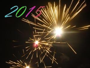 New Years 2015. Gary, Davis, Clueless, Christian, Warnings,
