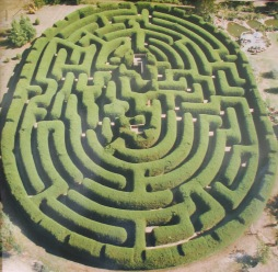 wandiligong_maze