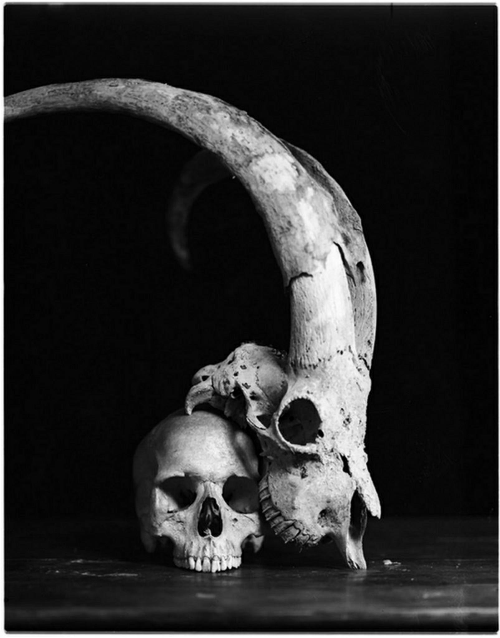 skull-demonic-fingers-satan-1565457-pxhere.com